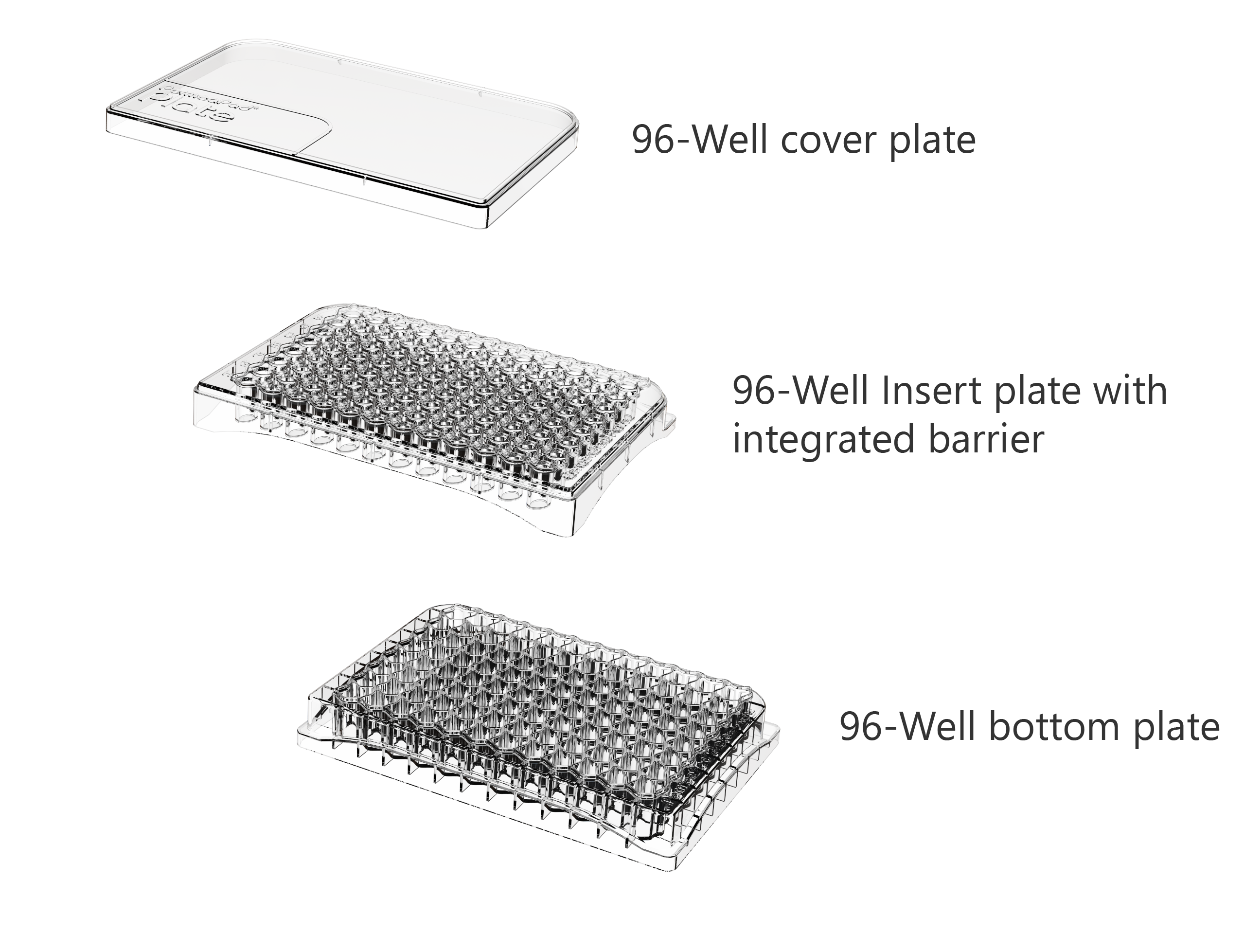 PermeaPad® Plate